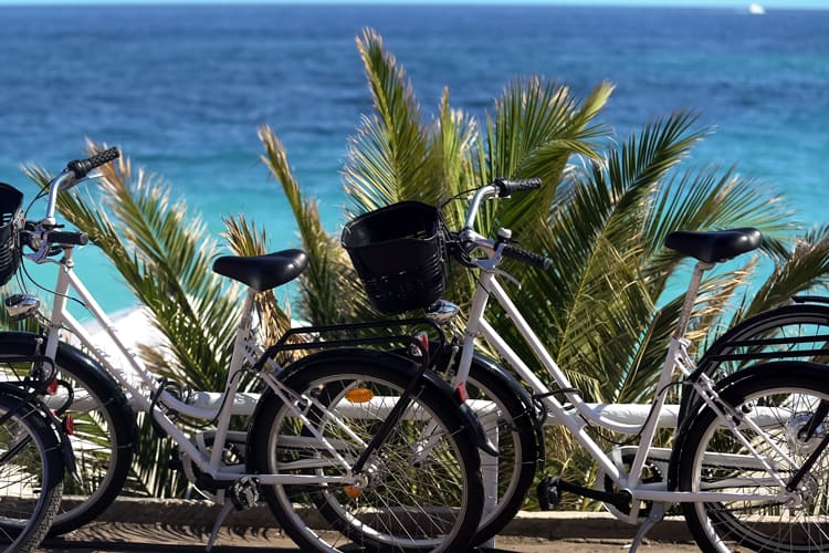 beach cruisers in los angeles for unique family experiences