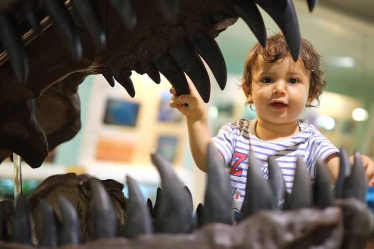 dinosaur exhibit dallas texas
